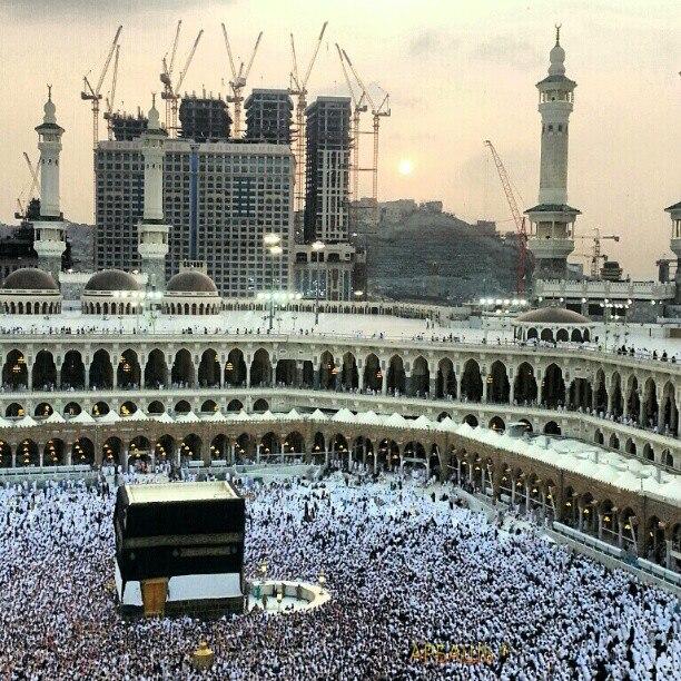 aid-el-kebir-mouton-la-mecque-arabie-saoudite-pelerinage