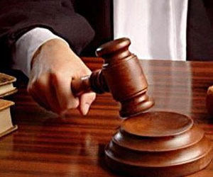 avocats-1265478