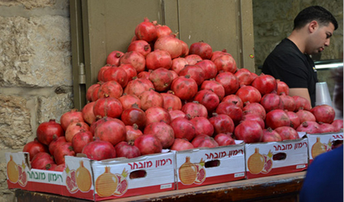 fruit-palestine-di