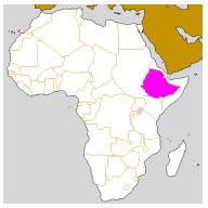 brancher en Éthiopie Turquie rencontres en ligne