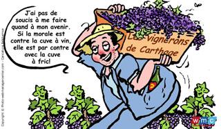 vignerons-uccv-carthage.jpg