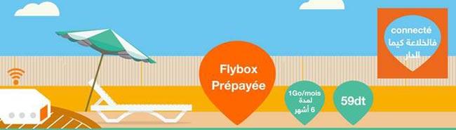 Orange-flybox-59dt.jpg